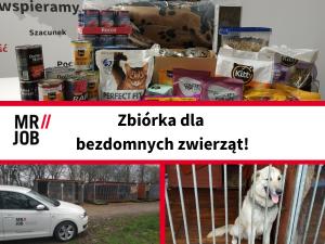MRJOB Zbiórka dla opuszczonych czworonogów z TOZ Jawor